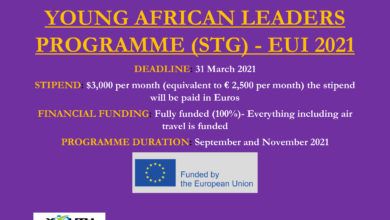 Photo of YOUNG AFRICAN LEADERS PROGRAMME AT EUI 2021