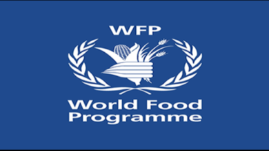 Photo of LIST OF WORLD FOOD PROGRAMME PAID INTERNSHIPS – APPLY